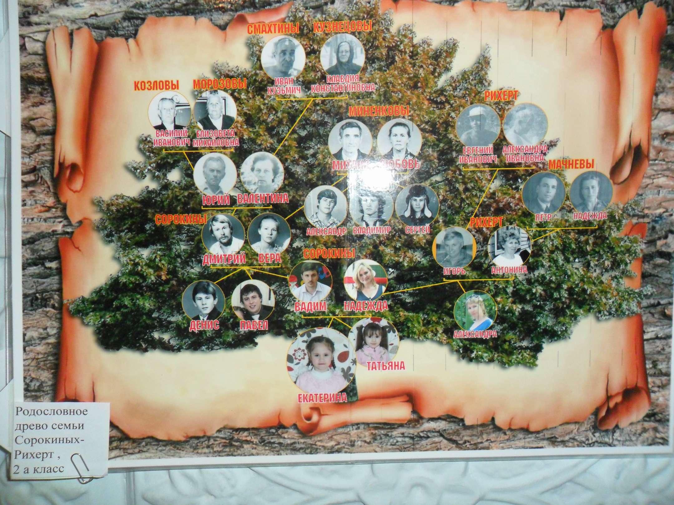 Генеалогическое дерево для детей все фото