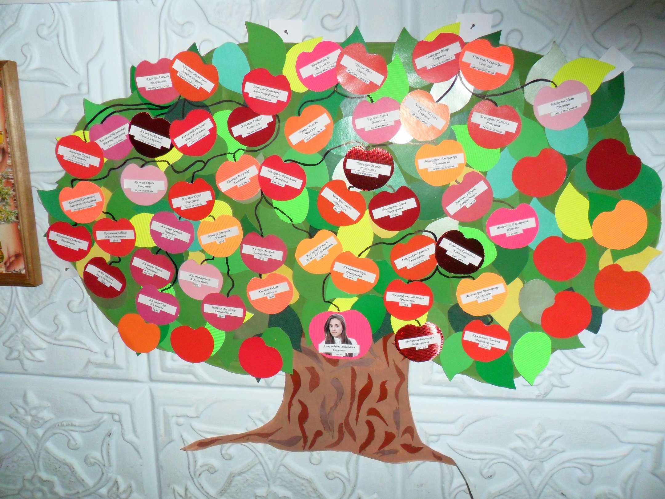 Оформление родословного дерева своими руками